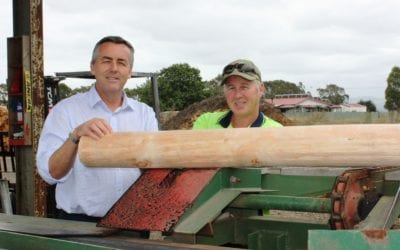 WORKS COMMENCE AT ALBERTON TIMBER PLANT