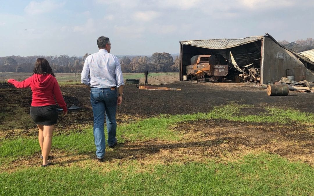 MENTAL HEALTH SUPPORT FOR BUSHFIRE-AFFECTED COMMUNITIES
