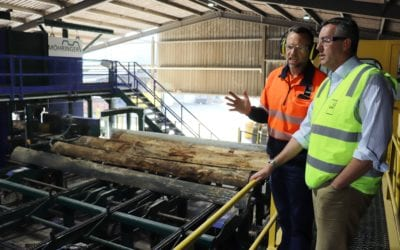 NEW $3 MILLION TIMBER PLANT OPENS AT ASH, HEYFIELD