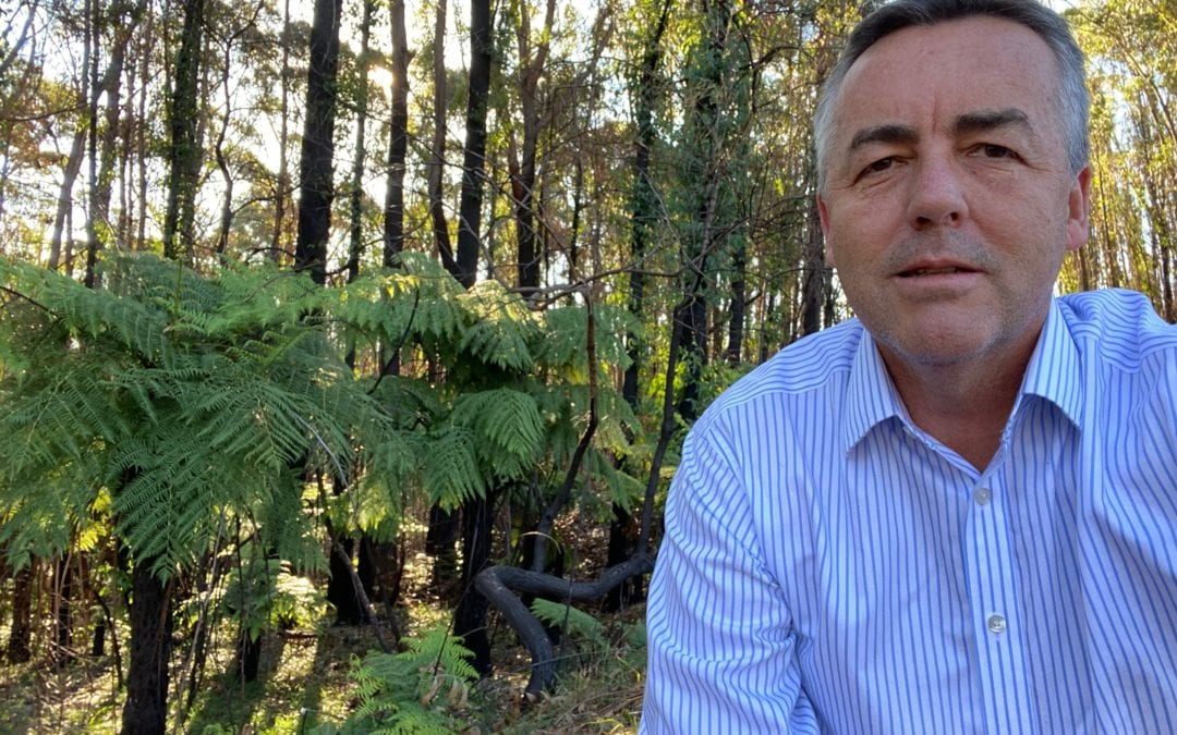 BUSHFIRE RECOVERY FOR AFFECTED NATIVE WILDLIFE IN GIPPSLAND