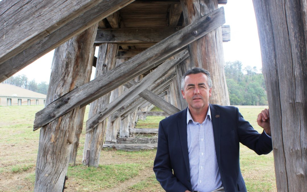 EAST GIPPSLAND NEEDS 10 YEAR RECOVERY PLAN: CHESTER
