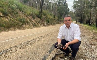 WORKS PROGRESSING ALONG MALLACOOTA-GENOA ROAD