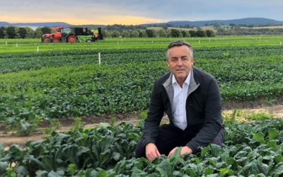 NEW VISA TO SUPPORT AGRICULTURE SECTOR