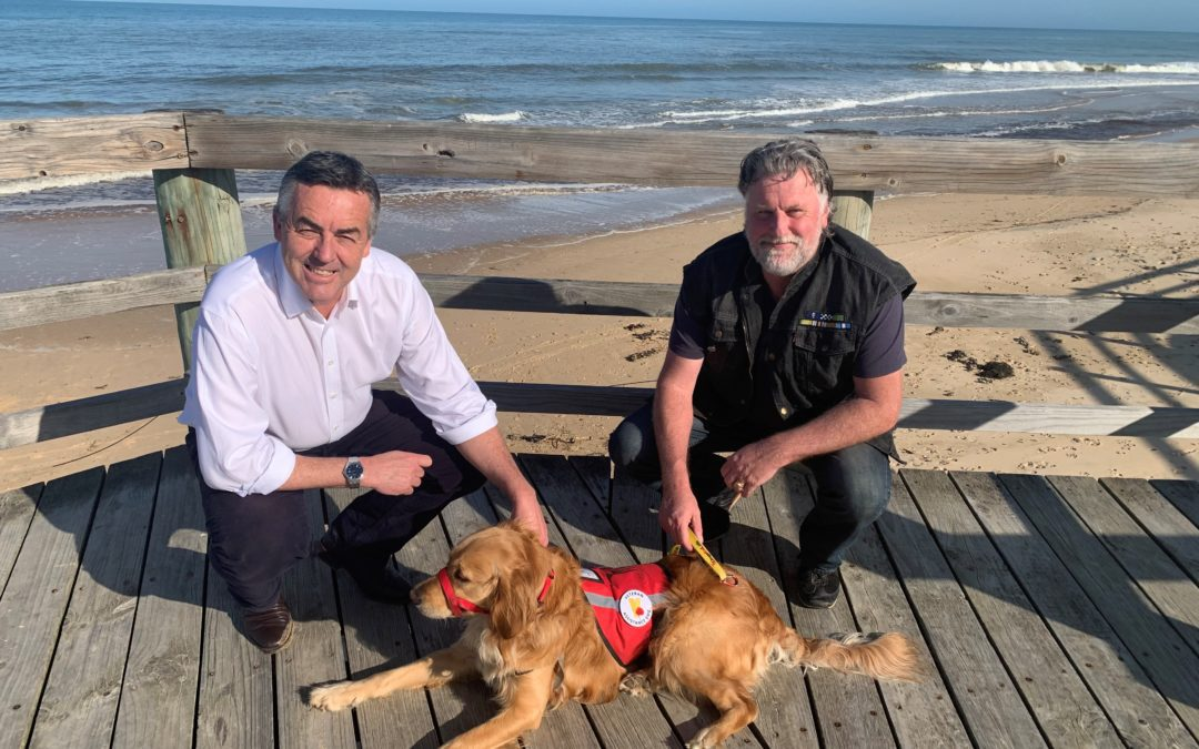 ASSISTANCE DOGS SAVING LIVES