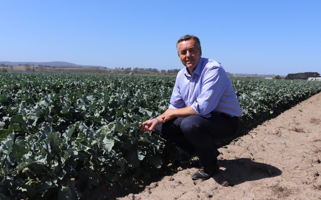 AUSTRALIAN GOVERNMENT STEPPING UP FOR GIPPSLAND FARMERS
